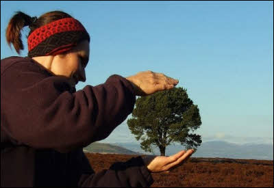 Forced Perspective Photography - Holding A Tree