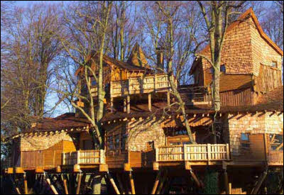 Biggest Treehouse In The World Inside biggest treehouse in the world inside tree to design
