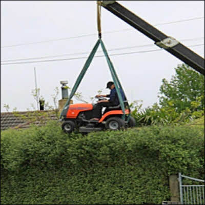 Lawn Mower Hedge Trimmer